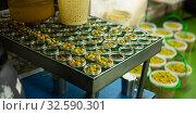 Купить «Olives and other ingredients in glass jars for canning», фото № 32590301, снято 10 декабря 2019 г. (c) Яков Филимонов / Фотобанк Лори