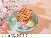 Купить «Sweet delicious dessert, homemade baked goods for breakfast. Belgian soft waffles on a blue plate with fresh milk and meringues on a peach-colored background in pastel tone», фото № 32607317, снято 30 ноября 2019 г. (c) Светлана Евграфова / Фотобанк Лори