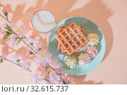 Sweet delicious dessert, homemade baked goods for breakfast. Belgian soft waffles on a blue plate with fresh milk and meringues on a peach-colored background in pastel tone. Стоковое фото, фотограф Светлана Евграфова / Фотобанк Лори