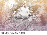 Купить «View from Montmartre park on Paris throw snow», фото № 32627305, снято 7 февраля 2018 г. (c) Сергей Новиков / Фотобанк Лори