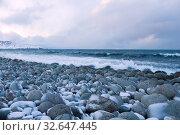 Купить «Февраль на пляже круглых камней. Побережье Баренцевого моря. Териберка, Россия», фото № 32647445, снято 20 февраля 2019 г. (c) Виктор Карасев / Фотобанк Лори