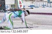 Купить «Khanty-Mansiysk team sportsman biathletes Ziganchin Rafael and Hairulina Elena skiing snow ski track relay race Junior biathlon competitions East of Cup», видеоролик № 32649097, снято 14 апреля 2019 г. (c) А. А. Пирагис / Фотобанк Лори