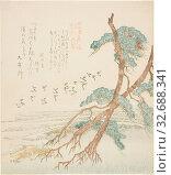 Pine Trees, from the series Tosa Diary for the Shofudai, Hisakataya, and Bunbunsha (Shofudai Hisakataya Bunbunsha Tosa nikki), early 19th century, Kubo... Редакционное фото, фотограф ARTOKOLORO QUINT LOX LIMITED / age Fotostock / Фотобанк Лори