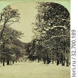 Купить «Snow Scene., Manchester Photographic Company (English, 1865 - 1868), 1865–1866, Albumen silver print», фото № 32700189, снято 17 июня 2019 г. (c) age Fotostock / Фотобанк Лори