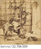 Basse-Cour et Voliere. Poulets de ferme., Unknown maker, French, about 1860, Albumen silver print (2019 год). Редакционное фото, фотограф ARTOKOLORO QUINT LOX LIMITED / age Fotostock / Фотобанк Лори