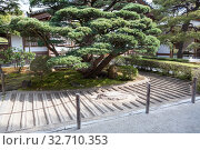 The sand garden with stripes is called Ginshadan. It is in the Ginkakuji shrine or temple of the Silver Pavilion. Officially named Jisho-ji a Zen temple in the Sakyo ward (2013 год). Стоковое фото, фотограф Кекяляйнен Андрей / Фотобанк Лори