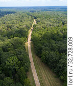 Купить «The Natchez Trace Parkway Mississippi MS also known as the 'Old Natchez Trace', is a historic forest trail within the United States which extends roughly...», фото № 32728009, снято 20 сентября 2019 г. (c) age Fotostock / Фотобанк Лори