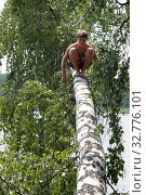 Загорелый мальчик 12 лет сидит на стволе березы, которая упала. Русский. Стоковое фото, фотограф Elizaveta Kharicheva / Фотобанк Лори