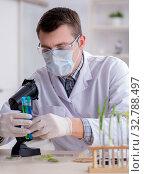 Купить «Male biochemist working in the lab on plants», фото № 32788497, снято 1 марта 2018 г. (c) Elnur / Фотобанк Лори