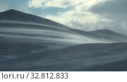 Купить «Blizzard and strong snow windstorm in Altai Kuray mountain range in winter season.», видеоролик № 32812833, снято 16 сентября 2019 г. (c) Serg Zastavkin / Фотобанк Лори