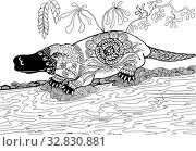 Купить «The platypus on the banks. Hand drawn patterns for coloring. Freehand sketch drawing for adult antistress coloring book», фото № 32830881, снято 27 мая 2020 г. (c) Олег Хархан / Фотобанк Лори