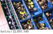 Copper and brass plumbing pipe corners in plastic boxes in shop. Стоковое видео, видеограф Яков Филимонов / Фотобанк Лори