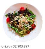Купить «Salad with pieces of chicken, tomatoes and lettuce», фото № 32903897, снято 26 февраля 2020 г. (c) Яков Филимонов / Фотобанк Лори