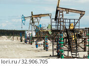Купить «Добыча нефти в Западной Сибири. Группа нефтекачалок. Oil production in Western Siberia. A group of pumpjacks.», фото № 32906705, снято 12 июня 2015 г. (c) Евгений Романов / Фотобанк Лори