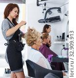 Купить «Hairdresser doing styling of senior woman», фото № 32909913, снято 26 июня 2018 г. (c) Яков Филимонов / Фотобанк Лори