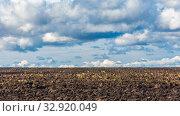 Купить «Agricultural land cultivated for sowing. Plowed field.», фото № 32920049, снято 22 сентября 2019 г. (c) Акиньшин Владимир / Фотобанк Лори