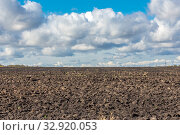 Купить «Agricultural land cultivated for sowing. Plowed field.», фото № 32920053, снято 22 сентября 2019 г. (c) Акиньшин Владимир / Фотобанк Лори