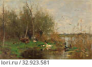 Ducks beside a duck shelter on a ditch, Landscape with ducks near a duck basket on a ditch edge. Shrubs and trees on the left, and reeds on the right.... Редакционное фото, фотограф ARTOKOLORO QUINT LOX LIMITED / age Fotostock / Фотобанк Лори