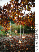 Купить «Lighted lanterns hanging from the branches of an oak tree in autumn.», фото № 32946141, снято 25 января 2020 г. (c) easy Fotostock / Фотобанк Лори