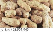 Peanuts in the shell roasted. Стоковое видео, видеограф Потийко Сергей / Фотобанк Лори