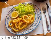 Купить «Calamares a la romana fried squid on plate. Traditional spanish dish», фото № 32951409, снято 22 февраля 2020 г. (c) Яков Филимонов / Фотобанк Лори