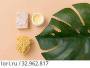 Купить «natural soap, sponge, body butter and monstera», фото № 32962817, снято 8 ноября 2018 г. (c) Syda Productions / Фотобанк Лори