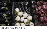 Купить «Plastic box with fresh eggplant on market counter», видеоролик № 32977317, снято 7 июля 2020 г. (c) Яков Филимонов / Фотобанк Лори