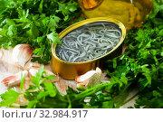 Купить «Pickled eels on background with garlic and greens at table», фото № 32984917, снято 11 июля 2020 г. (c) Яков Филимонов / Фотобанк Лори