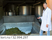 Купить «Male winemaker near grapes destemmer in winery», фото № 32994297, снято 13 сентября 2018 г. (c) Яков Филимонов / Фотобанк Лори