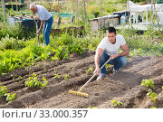 Young male horticulturist with rake cultivate land in garden outdoor. Стоковое фото, фотограф Яков Филимонов / Фотобанк Лори