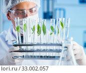 Biotechnology concept with scientist in lab. Стоковое фото, фотограф Elnur / Фотобанк Лори
