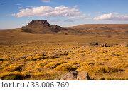 Views of steppe landscape of Pampas, Patagonia. Стоковое фото, фотограф Яков Филимонов / Фотобанк Лори