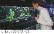 Купить «Portrait of young attractive brunette choosing exotic aquarium fish for home fish tank in pet store», видеоролик № 33013465, снято 21 февраля 2020 г. (c) Яков Филимонов / Фотобанк Лори