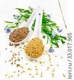 Семя льняное белое и коричневое в двух ложках на белом столе. Стоковое фото, фотограф Резеда Костылева / Фотобанк Лори