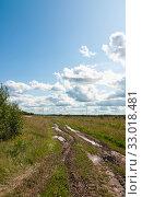Полевая дорога после дождя. Стоковое фото, фотограф Макаров Алексей / Фотобанк Лори