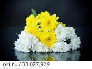 Купить «bouquet of white chrysanthemums with a greeting card for mom», фото № 33027929, снято 4 февраля 2020 г. (c) Peredniankina / Фотобанк Лори
