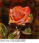 Купить «Red flower in the garden at autumn», иллюстрация № 33028689 (c) Парушин Евгений / Фотобанк Лори