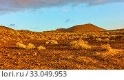Купить «Desert and small volcano at sunset inTenerife», фото № 33049953, снято 8 декабря 2019 г. (c) Роман Сигаев / Фотобанк Лори