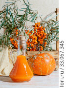 Купить «Vegetarian food healthy nutrition preserving harvest of ripe juicy sea buckthorn and homemade pumpkin, preparing fresh healthy vitamin drink and healing broth. Bottle juice branches orange berry fruit», фото № 33067345, снято 22 сентября 2019 г. (c) Светлана Евграфова / Фотобанк Лори