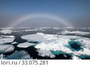 Купить «Fogbow over sea ice. Fogbows are similar to a rainbow, but produced by very small droplets in fog or cloud, which diffract light, instead of large raindrops which do not, Svalbard, Norway, July.», фото № 33075281, снято 23 февраля 2020 г. (c) Nature Picture Library / Фотобанк Лори
