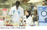 Купить «Serious man and woman lab technicians discussing about results during performing experiments», видеоролик № 33114233, снято 25 апреля 2019 г. (c) Яков Филимонов / Фотобанк Лори