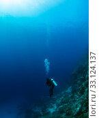 Diver in the deep. Стоковое фото, фотограф Dirk-Jan Mattaar / PantherMedia / Фотобанк Лори