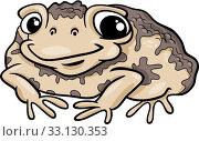 Купить «toad amphibian cartoon illustration», иллюстрация № 33130353 (c) PantherMedia / Фотобанк Лори