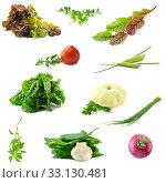 Купить «Collection of fresh vegetables necessary on the each kitchen», фото № 33130481, снято 8 апреля 2020 г. (c) PantherMedia / Фотобанк Лори