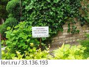 Спасибо, что не ходите по клумбам. Стоковое фото, фотограф Наталья Гармашева / Фотобанк Лори