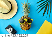 pineapple in sunglasses, hat, camera and palm leaf. Стоковое фото, фотограф Syda Productions / Фотобанк Лори