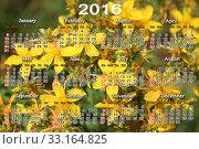 Купить «calendar for 2016 with yellow flowers of St.-John's wort», фото № 33164825, снято 6 июля 2020 г. (c) PantherMedia / Фотобанк Лори