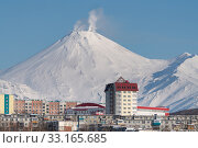 Купить «Winter city scape of Petropavlovsk-Kamchatsky City and active Avachinsky Volcano», фото № 33165685, снято 23 января 2020 г. (c) А. А. Пирагис / Фотобанк Лори