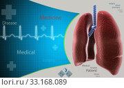 Купить «Human lungs», фото № 33168089, снято 28 февраля 2020 г. (c) PantherMedia / Фотобанк Лори