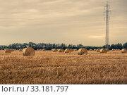 Купить «Round bales on a field with pylons», фото № 33181797, снято 31 мая 2020 г. (c) PantherMedia / Фотобанк Лори